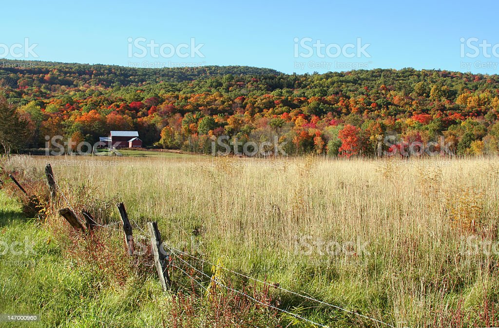 Red barn in Autumn stock photo