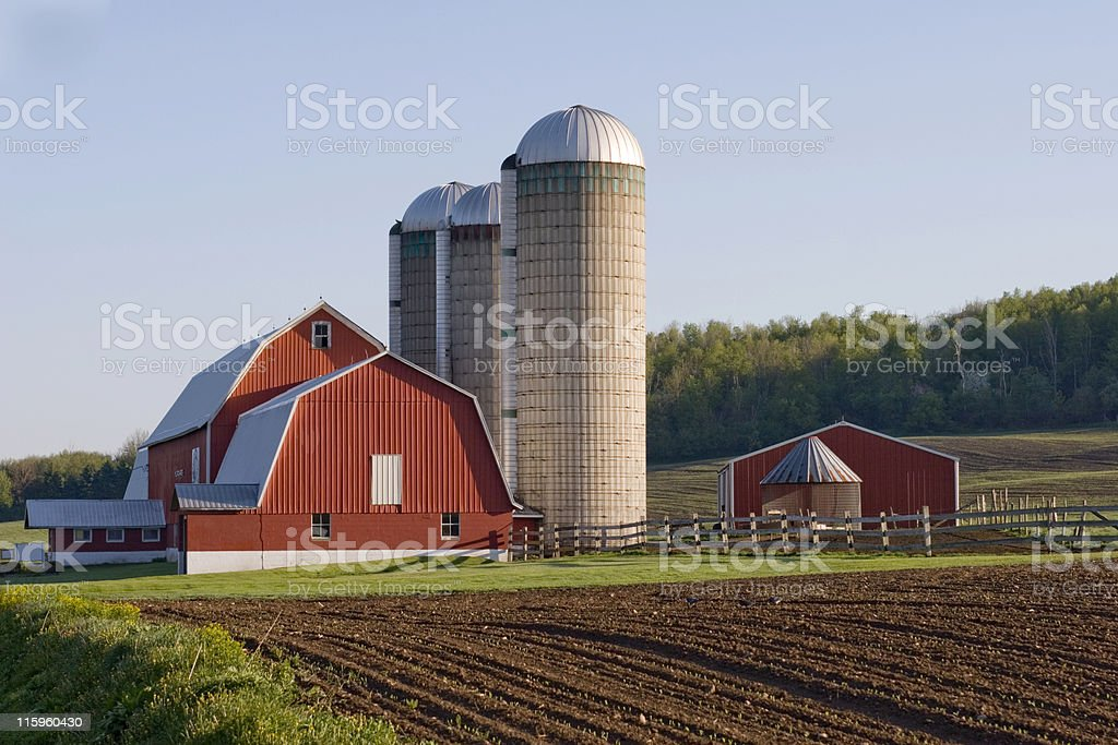 Red Barn in field stock photo