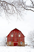 Fresh snow and bare trees surround an old red barn in the rural Midwest.