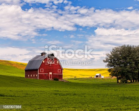 Red Barn and canola field in the Palouse