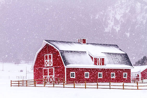 Red Barn in the Snow stock photo