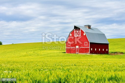 Red Barn in Wheatfield