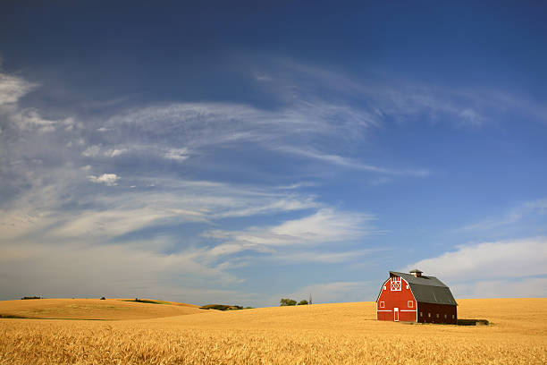 red barn on the prairie - great plains stock photos and pictures
