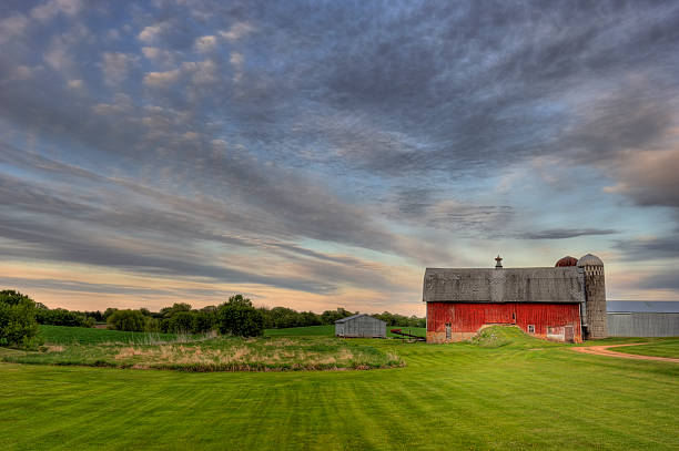 Red Barn A country Red barn and summer evening cloudscape in rural Minnesota. This photo includes farm silos and sheds with green grass in the foreground. I used a wide angle 14-24 mm lens to help with the framing of this landscape shot. minnesota stock pictures, royalty-free photos & images