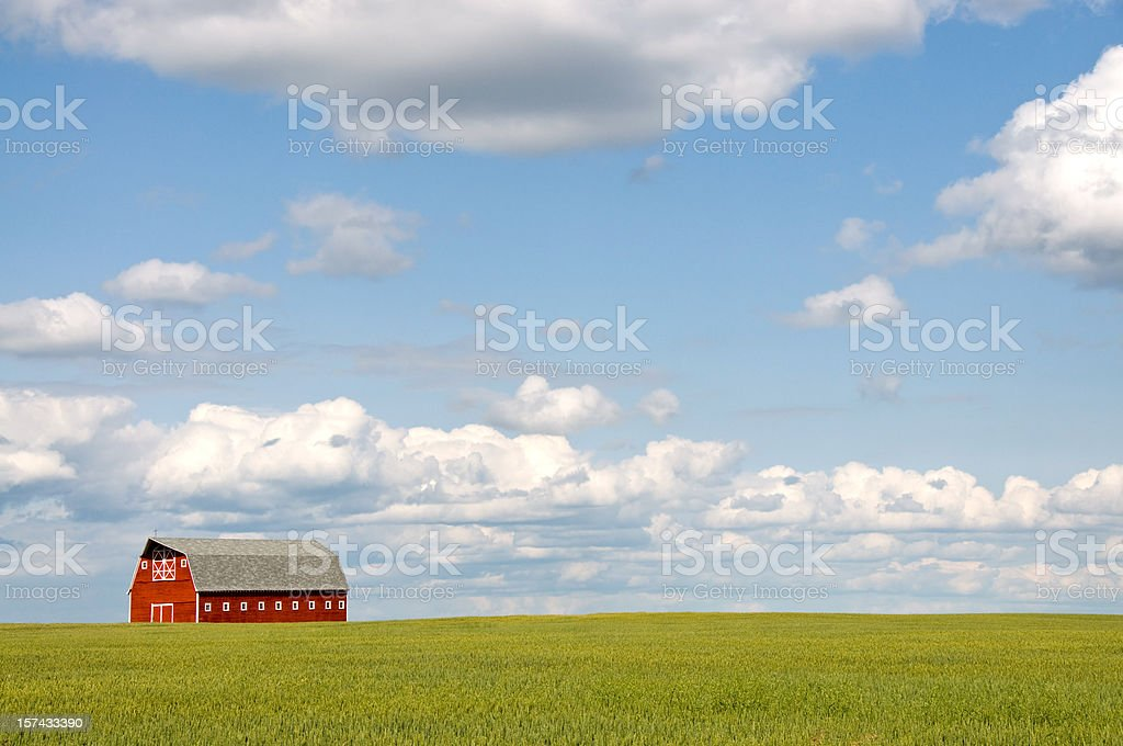Red barn portrait on open field royalty-free stock photo