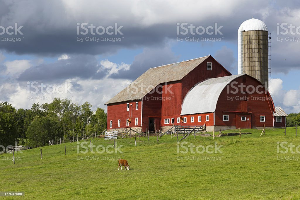 Red Barn Summer royalty-free stock photo