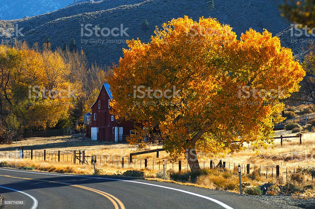 Red barn surrounded by fall colors stock photo