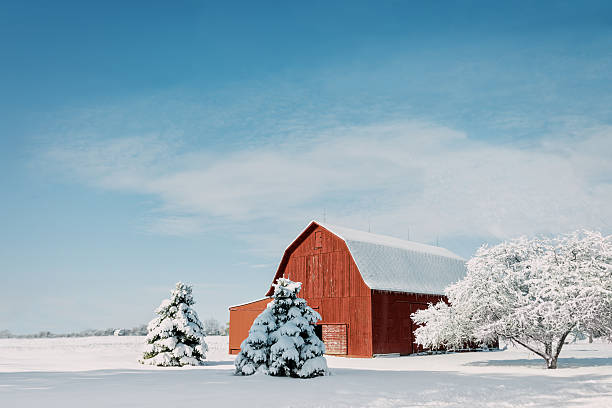 Red Barn With Snow stock photo