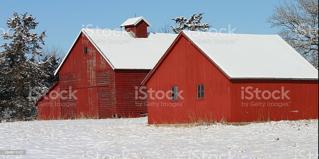 red barn with white snow and green trees royalty-free stock photo