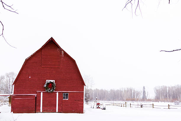 Red barn with white snow and sky Red barn in snow on the farm in Colorado. steamboat springs stock pictures, royalty-free photos & images