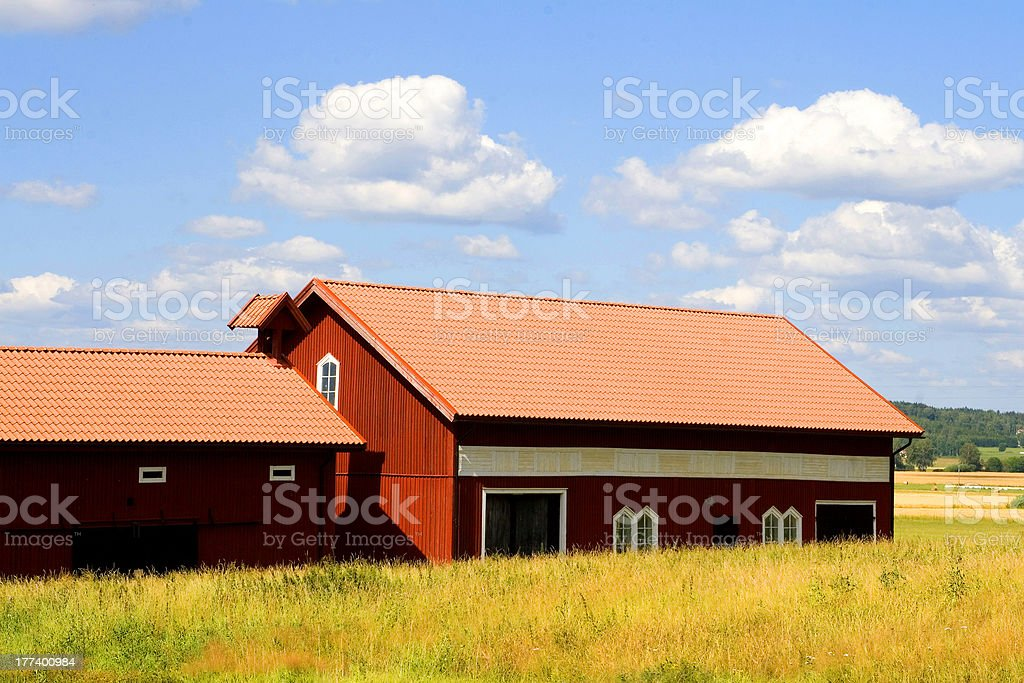 Red Barns in Fields of Gold royalty-free stock photo