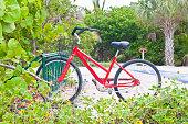 istock Red beach bike between mangrove trees palm trees and sea grape 1316659195