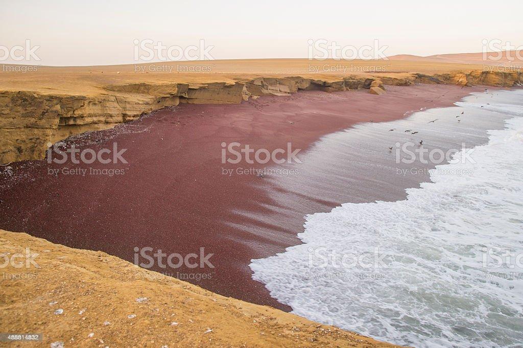 Red Beach, Paracas Reserve, Peru. stock photo