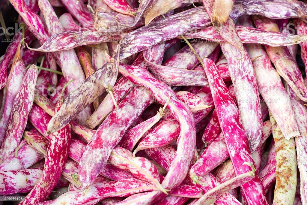 Red beans borlotti stock photo