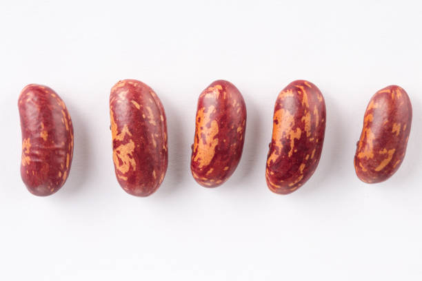 red beans on the white background. - fasola czerwona zdjęcia i obrazy z banku zdjęć