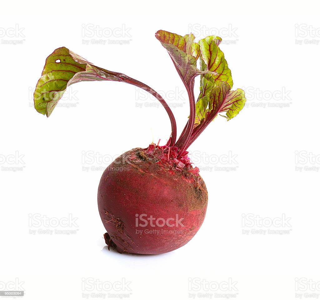 Red beet on a white background royalty-free stock photo
