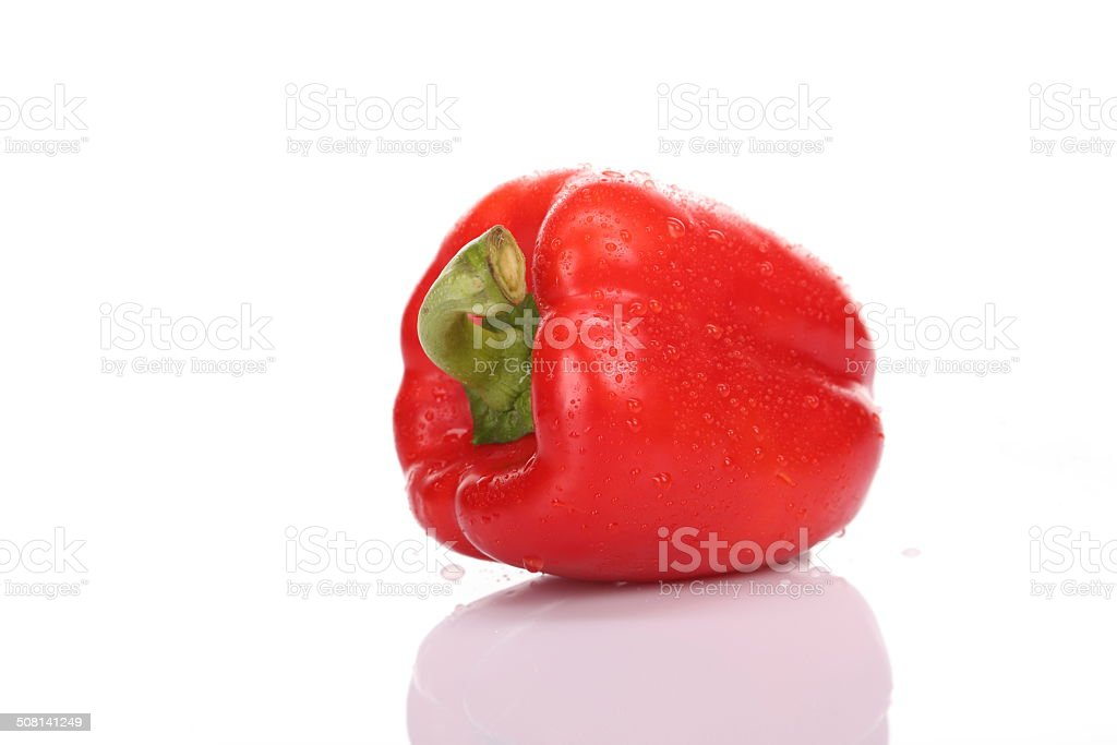 Red bell pepper with drops of water stock photo