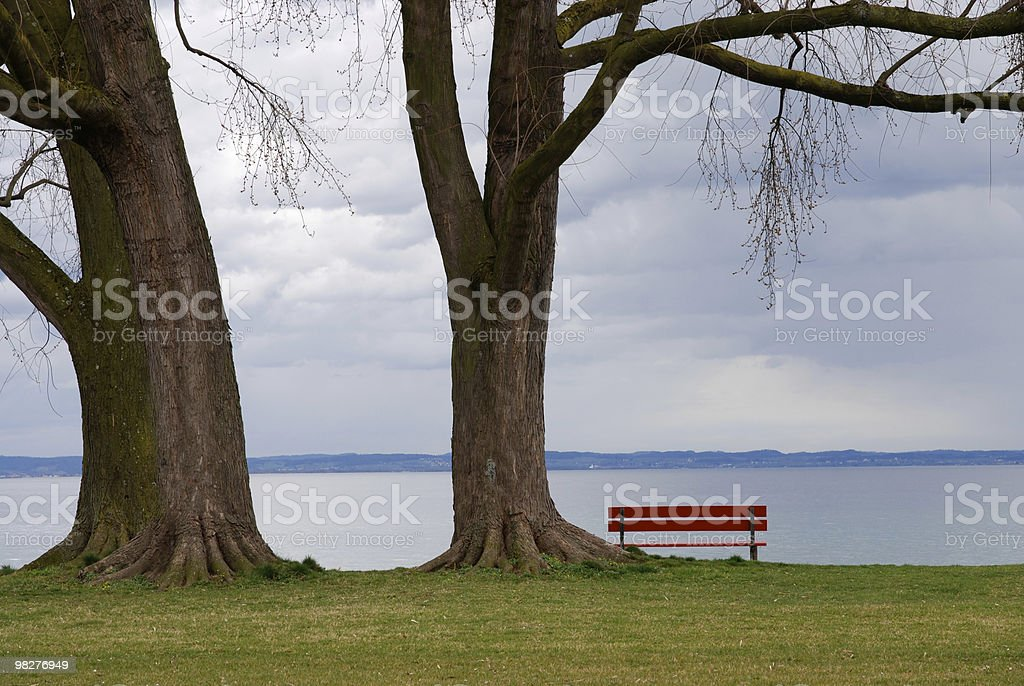 red bench lake side on a sad rainy day royalty-free stock photo