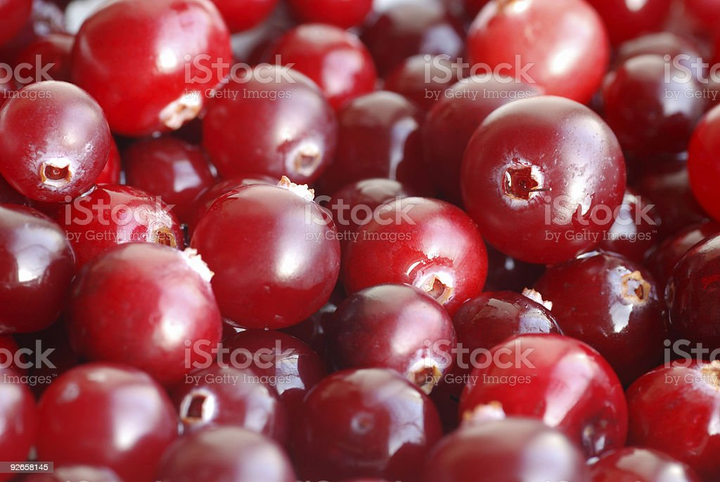 red berries background royalty-free stock photo