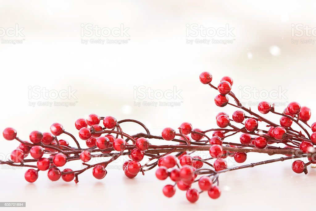 red berries Christmas card, winter background royalty-free stock photo