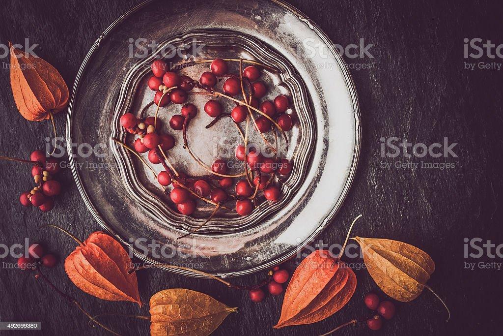 Rote Beeren im vintage-Metallschild mit physalis horizontal Lizenzfreies stock-foto