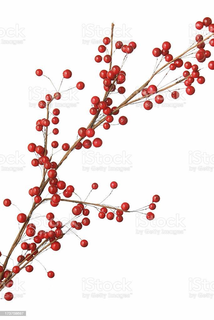 Roten Beeren – Foto