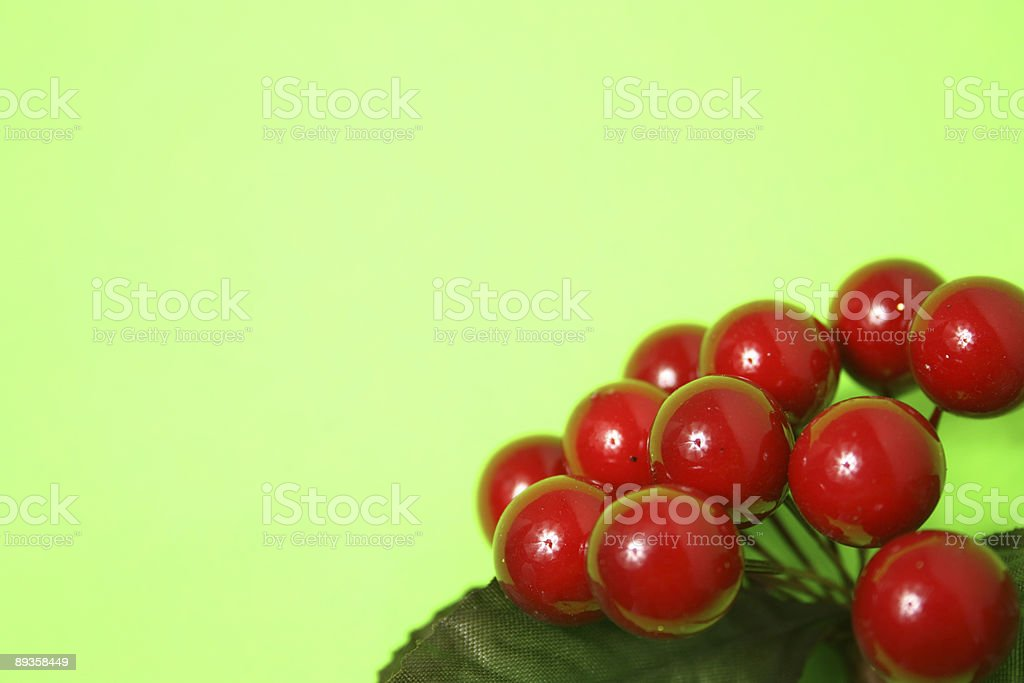 Red Berries royalty free stockfoto
