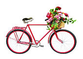 Red bicycle with floral basket isolated on white background