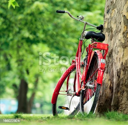 A red bike propped up against a tree in a public park during summer.