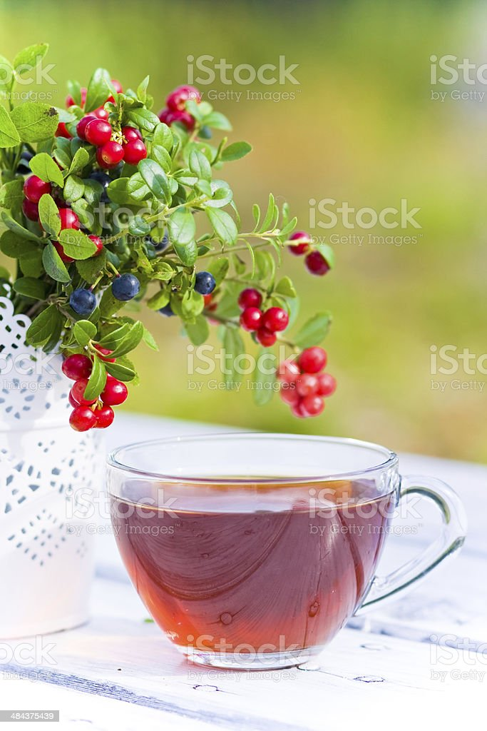 Red bilberry and blueberries with tea on wooden background royalty-free stock photo