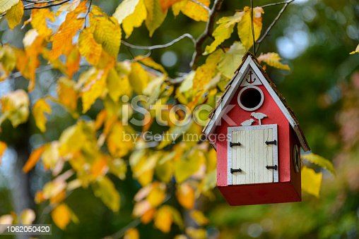 Red birdhouse hanging on a branch with yellow autumn leaves