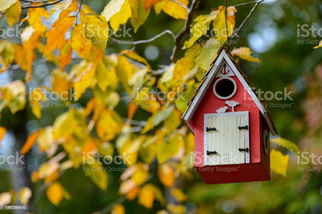 Red birdhouse hanging on a colorful branch stock photo