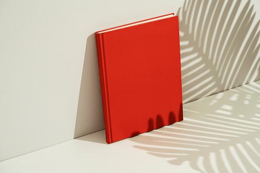 Red blank magazine mockup, template