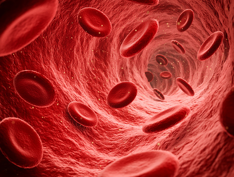 Endoscopic view of flowing red blood cells in a vein, illustration render