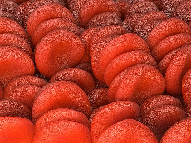 Red blood cells, illustration stock photo