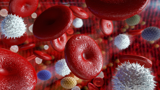 istock Red blood cells in artery 851000214