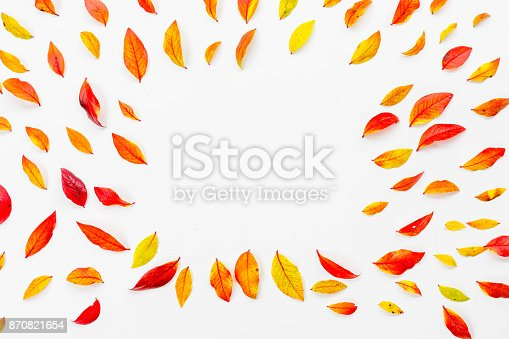 867774250 istock photo Red blueberry autumn leaves 870821654