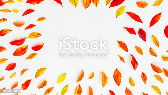867774250istockphoto Red blueberry autumn leaves 870821688