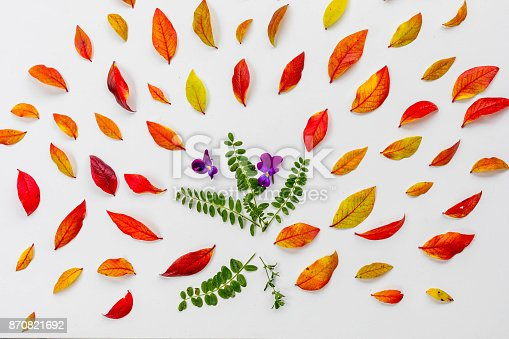 867774250 istock photo Red blueberry autumn leaves 870821692