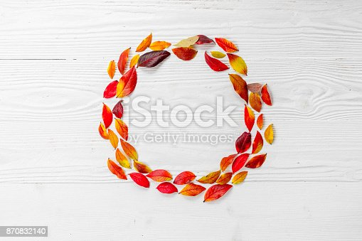 867774250istockphoto Red blueberry leaves 870832140