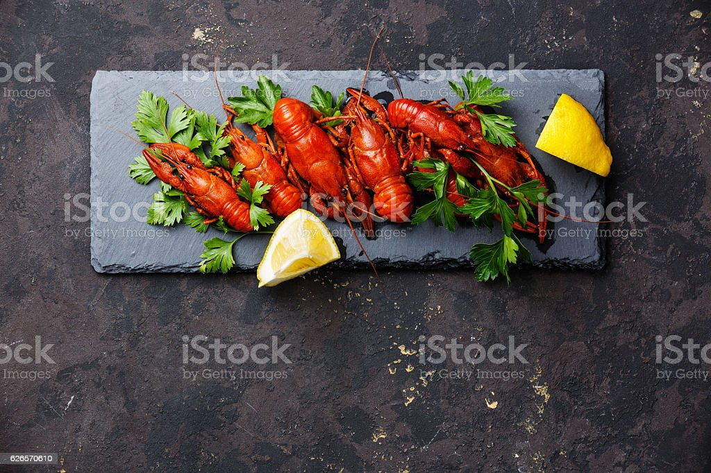 Red boiled crayfish copy space stock photo