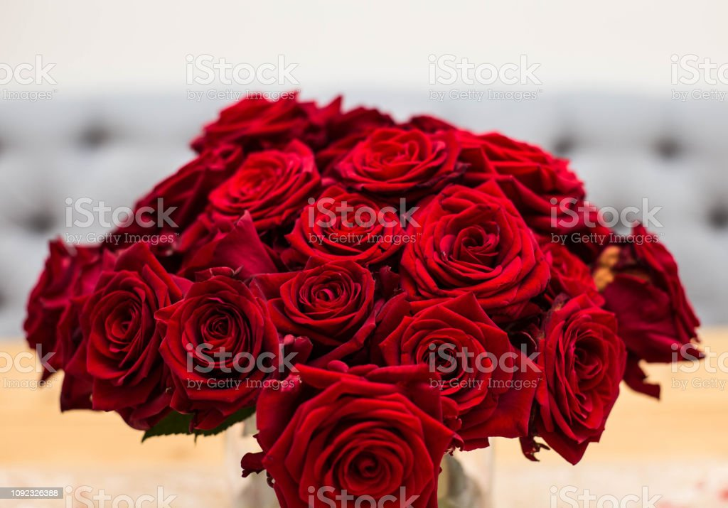 Red bouquet of red roses. Wedding flowers on gray background....