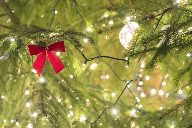 Red bow and Christmas lights in branches stock photo