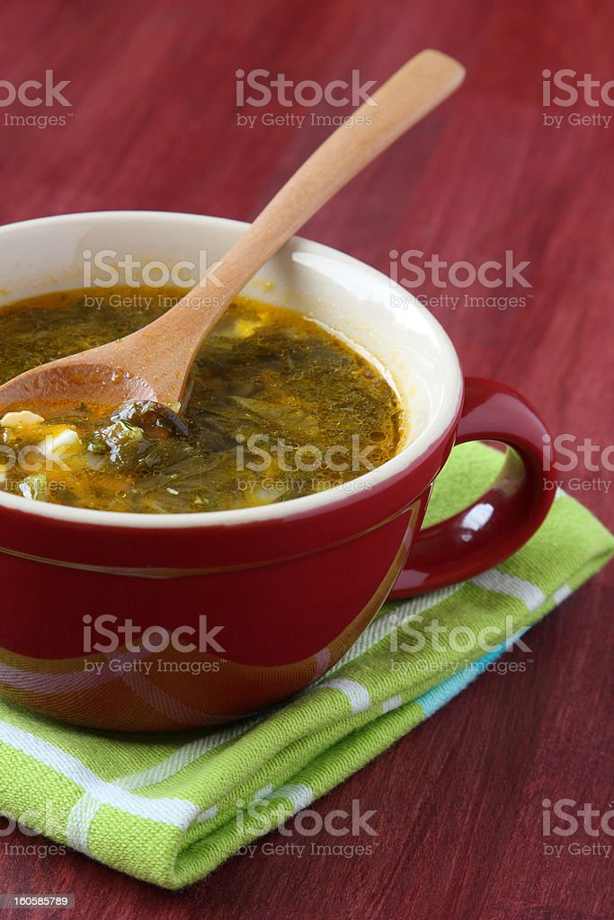 Red bowl of green vegetable soup royalty-free stock photo