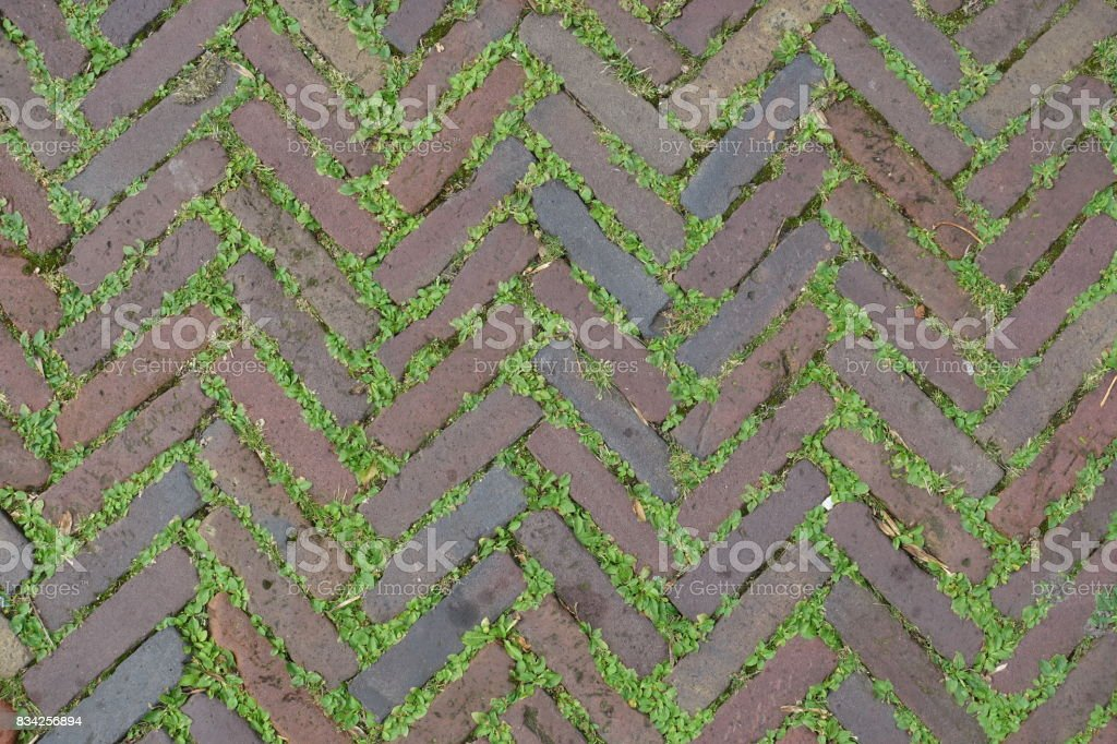 Red Brick Street Road Paving Background stock photo