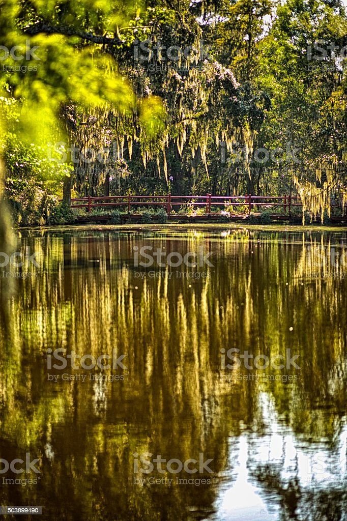 Red Bridge Amid Moss stock photo