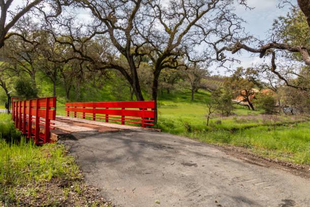 Red Bridge Horizontal stock photo