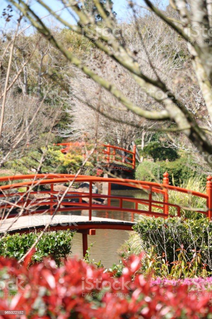 Red Bridges over stream in Japanese Garden in Winter stock photo