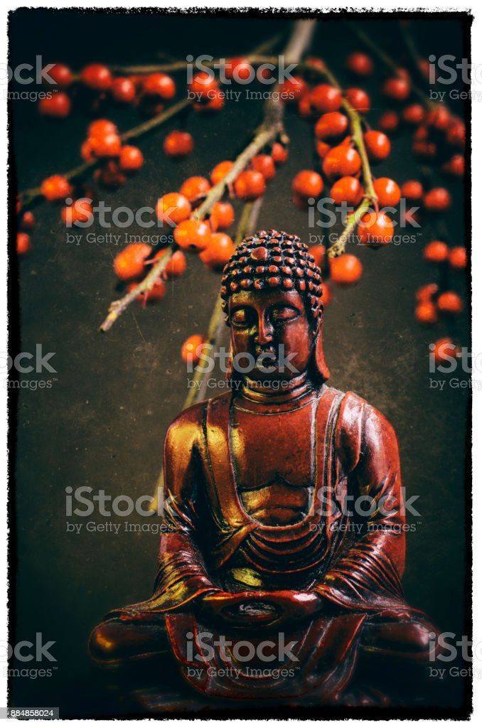 Red Buddha Statue with red berries stock photo