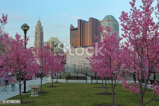 1024248138istockphoto Red buds blooming downtown dusk 515789292